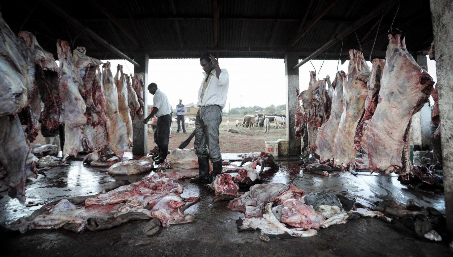 Slaughterhouse. Tanzania.