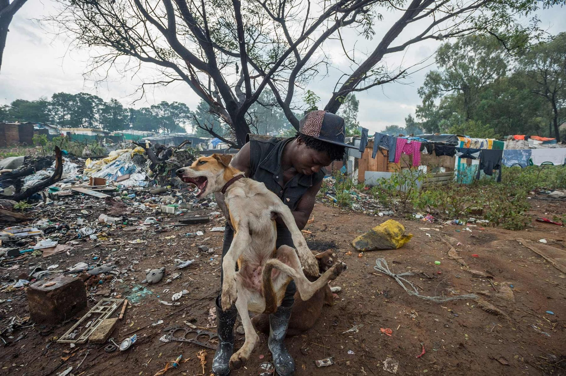 Moses, helping to collect sick and injured animals at the Randfontein municipal dumping site in Johannesburg. South Africa.