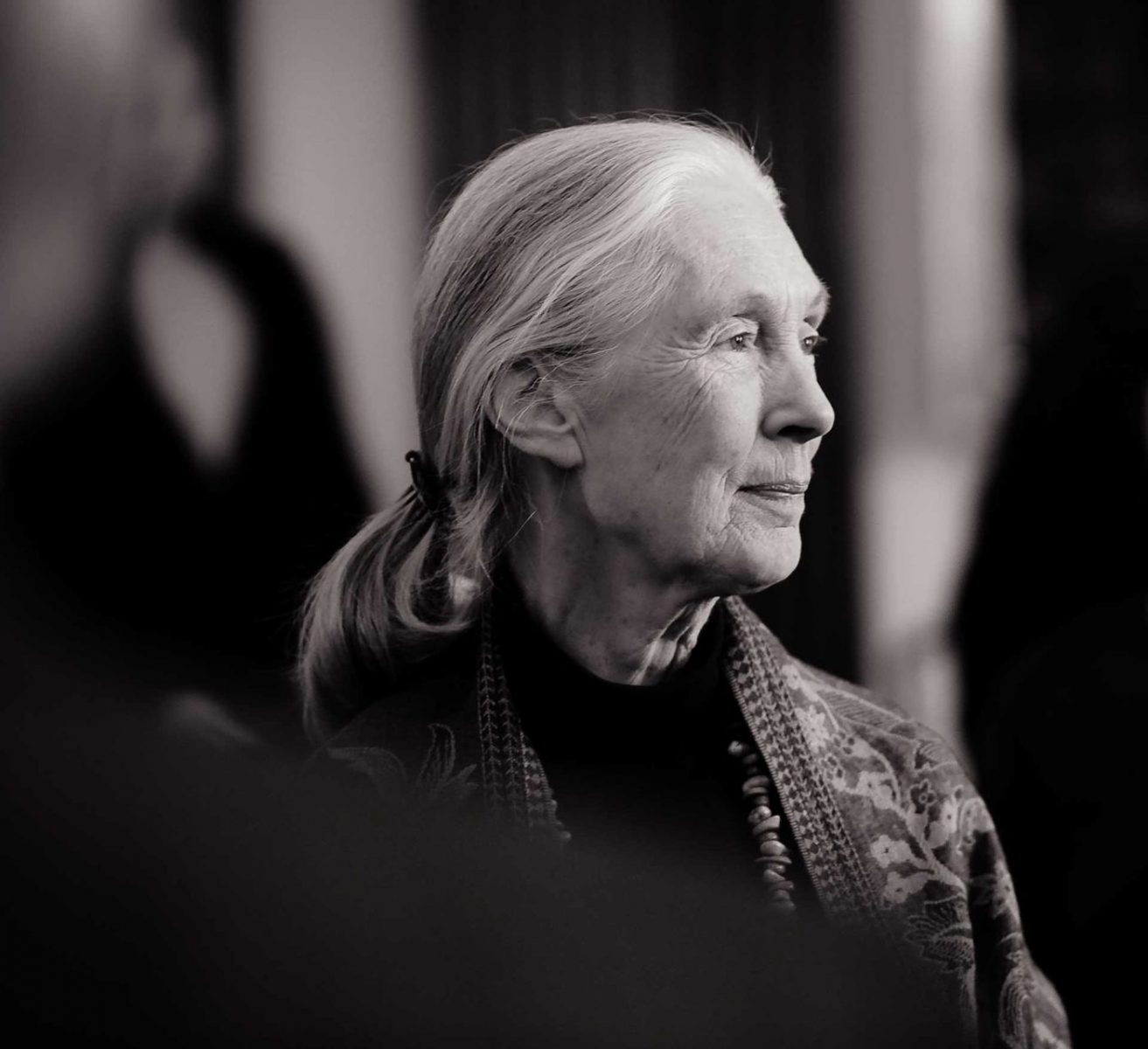 Primatologist and United National Ambassador for Peace Dr. Jane Goodall. Canada