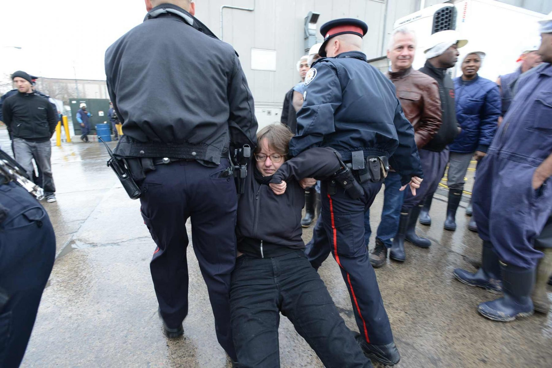 Animal activist Jenny McQueen being dragged away and arrested by police at a Direct Action Everywhere event, which blockaded the entry of trucks carrying cows to slaughter. Canada, 2014