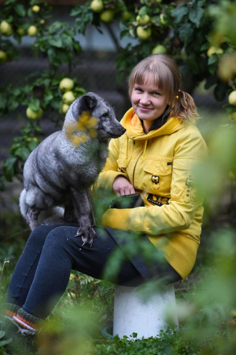 Tuulispää Sanctuary founder Piia Anttonen with Otto, a fur farm escapee. Finland, 2016