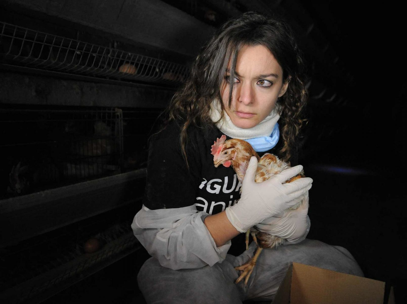 Maria Gonzalez with a hen during an open rescue with Igualdad Animal. Spain, 2009