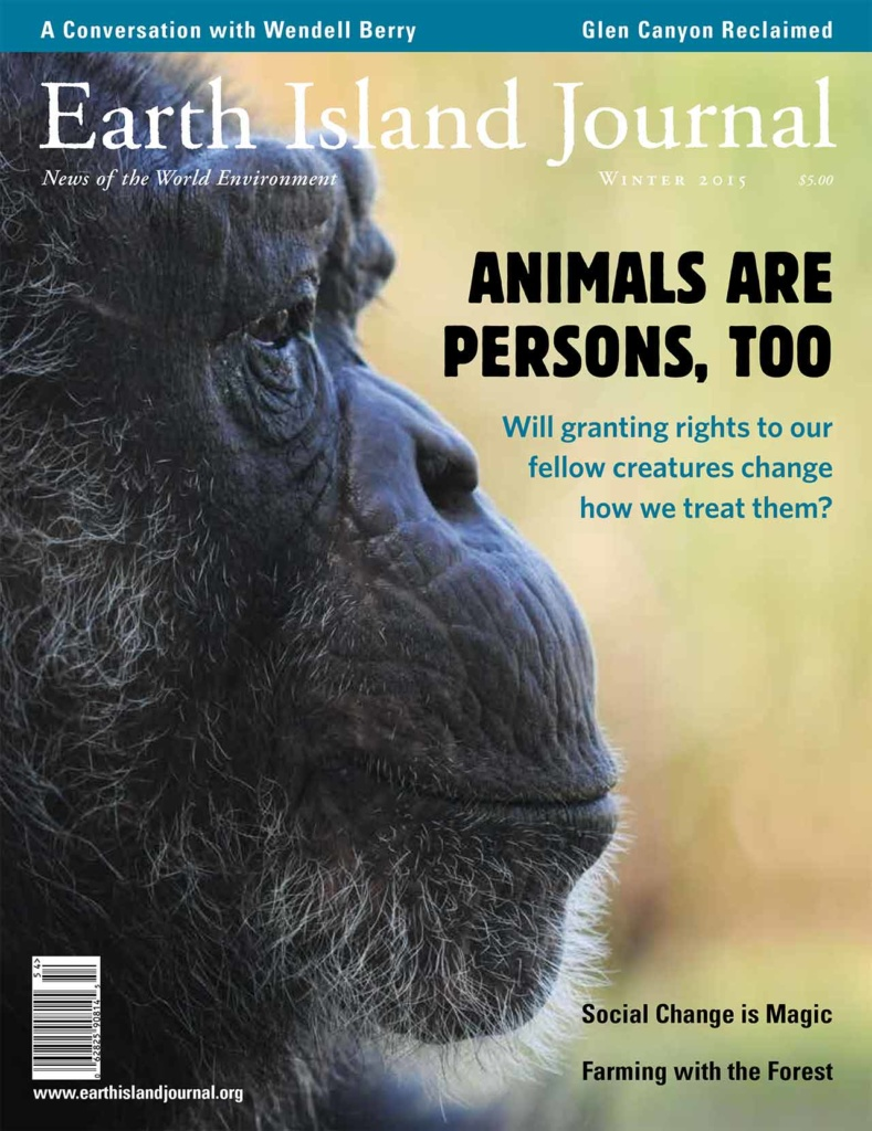 Earth Island Journal - Cover Image
